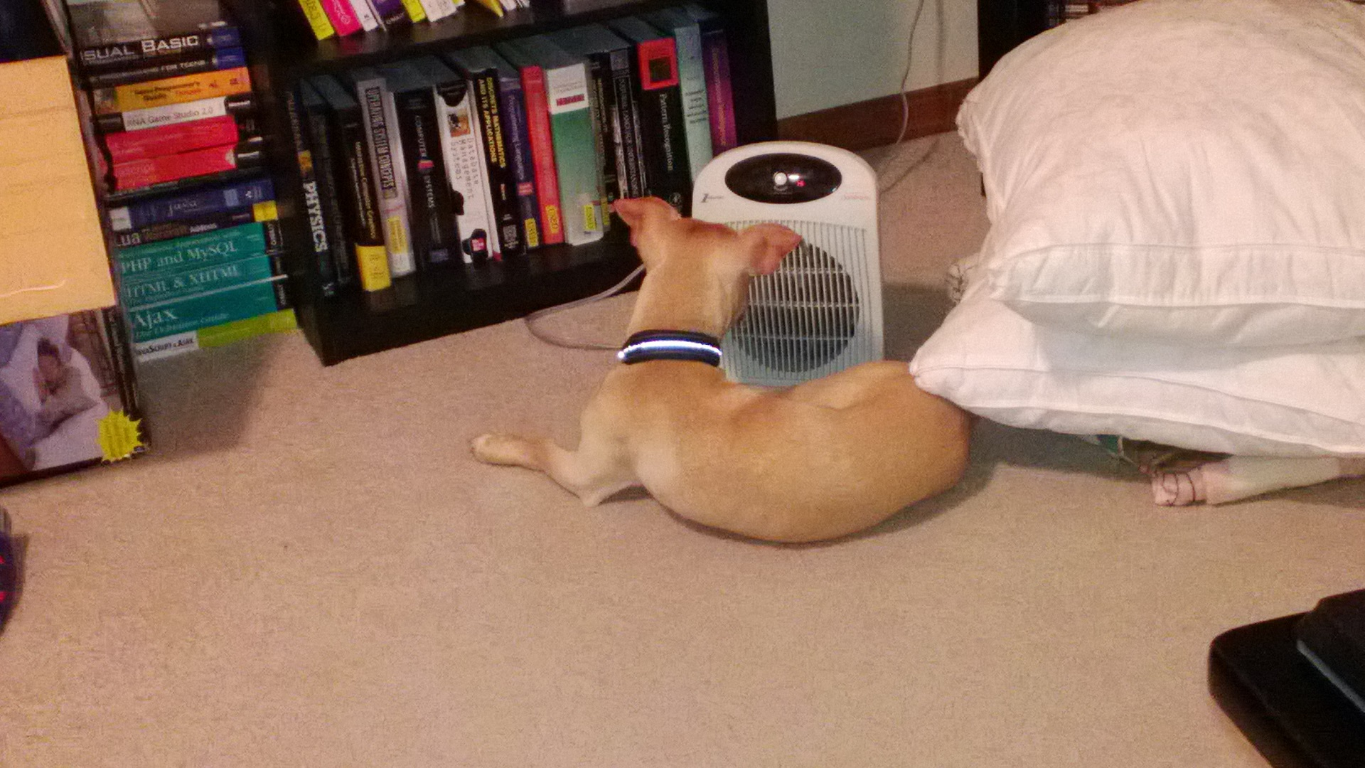 Sheldon and the heater